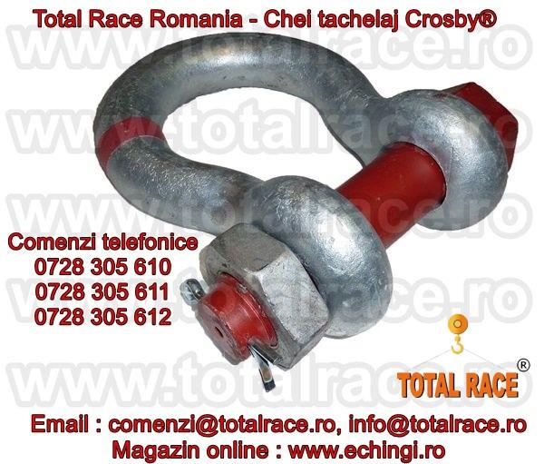 CHEI TACHELAJ 175 TONE G2140, ECHIPAMENTE DE RIDICAT CROSBY®